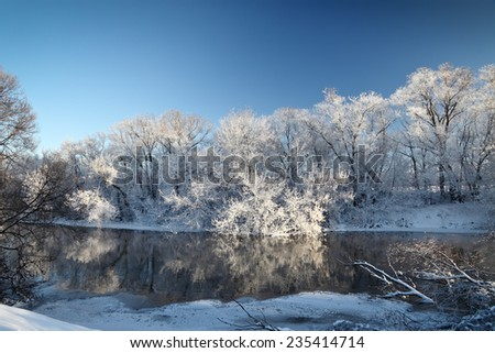 Frozen river and trees at winter cold sunny day. - stock photo