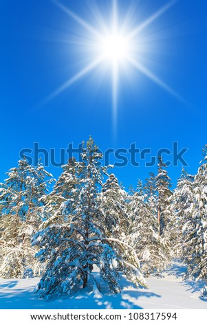 Frozen Shiny Landscape - stock photo