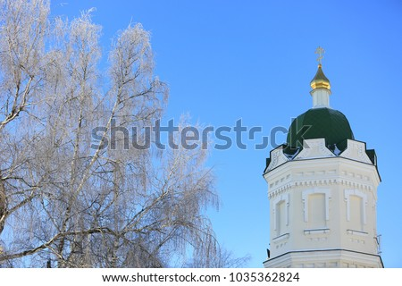 frozen tree and Cathedral cupolla on blue sky background