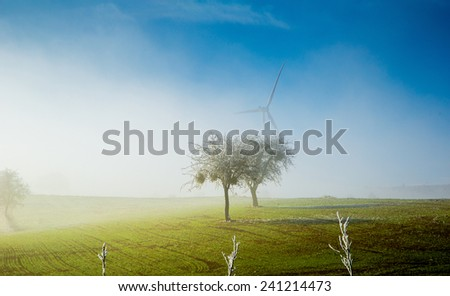 Frozen tree and windmill in the field with blue sky during the coldest season of Turkey. Frost is making the daily life harder both for people and crops.