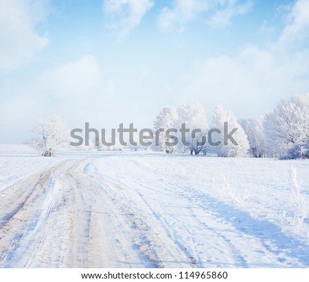 Frozen trees and road in a field - stock photo