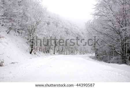 Frozen trees and snowy road at winter - stock photo