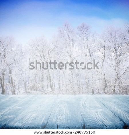 Frozen wooden path in winter on sunny day - stock photo