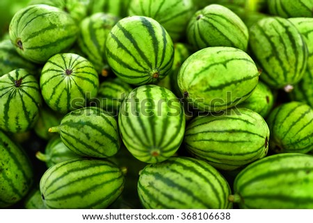 Fruit Background. A Lot Of Big Sweet Green Organic Ripe Watermelons In The Farmers Market ( Supermarket ) In Thailand, Asia. Nutrition And Vitamins. Healthy Raw Diet Food.  - stock photo