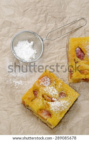 fruit cake with nectarines and powdered sugar on kitchen paper - stock photo