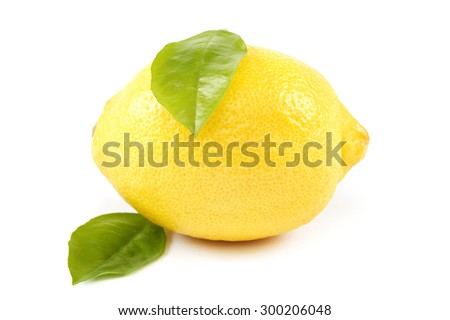Fruit of the lemon and green leaves isolated on white background. - stock photo