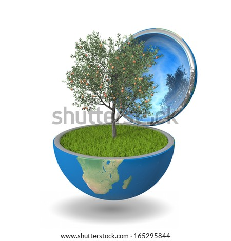 Fruit tree growing inside opened planet Earth, isolated on white background, concept of ecology or bio agriculture. Elements of this image furnished by NASA - stock photo