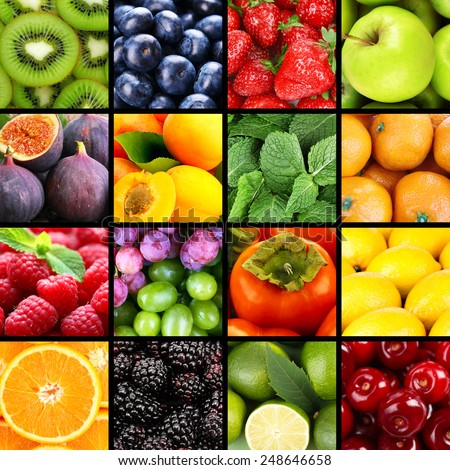 Fruits and berries in colorful collage - stock photo