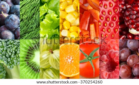 Fruits and vegetables background. Concept. Fresh food