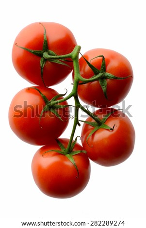 Fruits and vegetables: fresh red tomatoes on a branch, isolated on white background - stock photo
