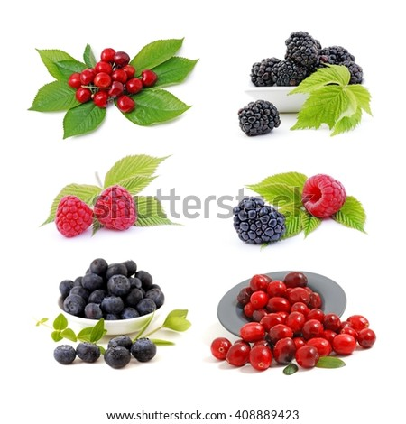 Fruits. Fruits collection isolated on white. Fruits, fruits, fruits, fruits isolated on white background. Healthy set of fruits.