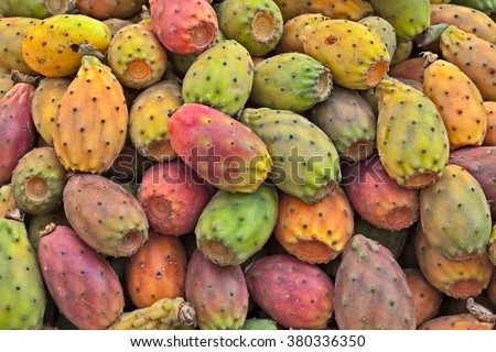 fruits of indian fig, opuntia ficus-indica, typical mediterranean cactus