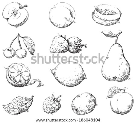 Fruits. Set of fruits at engraving style  - stock photo