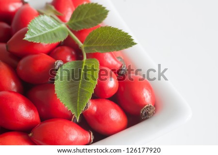 fruits wild roses in a bowl - stock photo