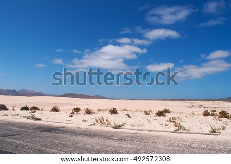 How are Sand Dunes Protected?