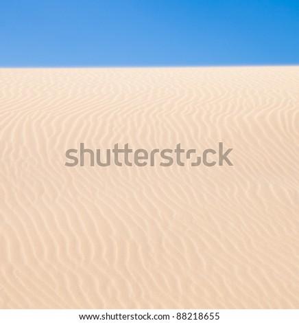Fuerteventura; Corralejo sand dunes nature park - stock photo