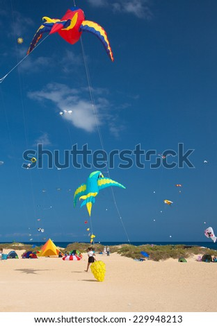 FUERTEVENTURA, SPAIN - NOVEMBER 08: Viewers watch from the ground as multicolored kites fill the sky at 27th International Kite Festival, November 08, 2014 in Dunes of Corralejo, Fuerteventura, Spain