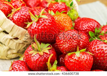 Full basket of ripe strawberries that are poured out on the canvas
