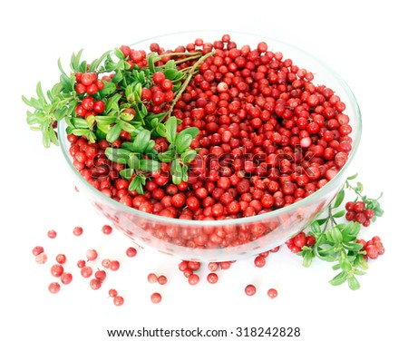 Full bowl of cowberries isolated on white background - stock photo