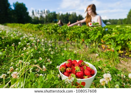 Full bowl of strawberries. Focus on bowl and group of girls behind, horizontal format - stock photo