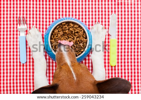 full dog food bowl with knife and fork on tablecloth,paws and head of a dog - stock photo