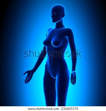 Full Female Body - Isometric View - Blue concept - stock photo
