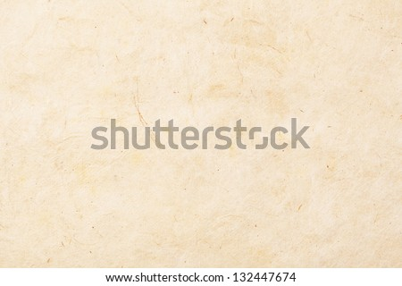 Full frame close up view of a hand made old piece of textured paper with organic elements mixed in. - stock photo