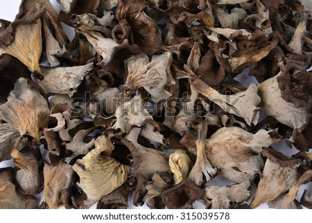 Full frame of delicious edible Horn of Plenty mushrooms or Craterellus cornucopioides, view from above - stock photo