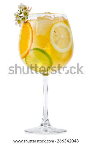 Full glass of fresh cool tonic with fruits isolated on white background - stock photo
