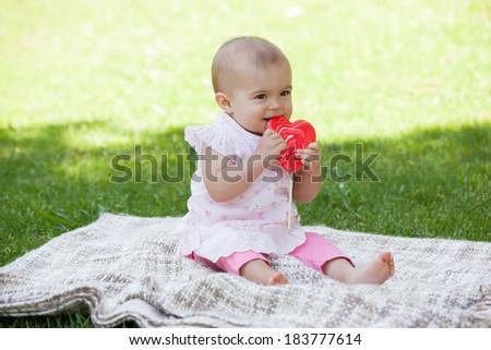Full length of a cute baby sitting on blanket at the park - stock photo