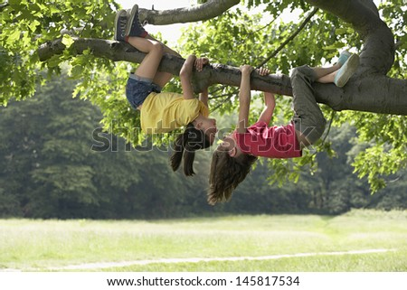 Hanging From a Tree Upside Down Girls Hanging Upside Down
