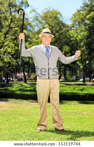 Full length portrait of a happy senior man standing and gesturing happiness in park - stock photo