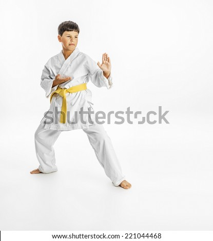 Full length portrait of a karate child exercise on white background - stock photo