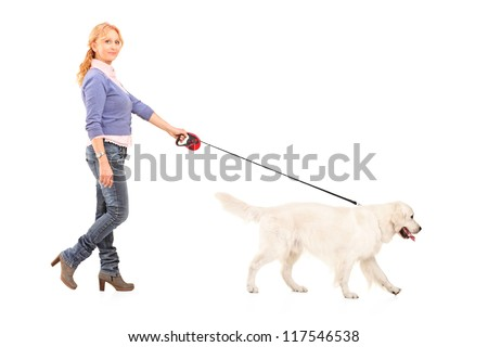 Full length portrait of a woman walking a retriever dog isolated on white background - stock photo
