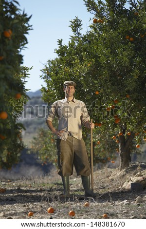 Full length portrait of middle age farmer standing in orange field - stock photo