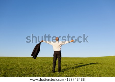 Full length rear view of businessman with arms outstretched standing on grassy field against clear sky - stock photo