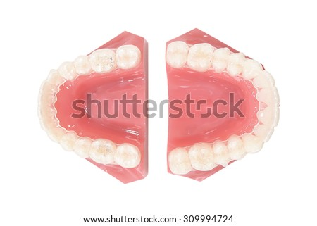 Full medical Denture , Dental plate from top view - stock photo