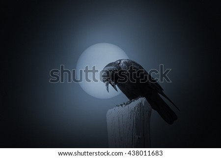 Full moon in an overcast night with crow. Added some digital grain in the background.