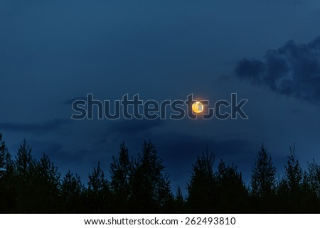 Full moon in early evening above silhouette of tree crowns - stock photo