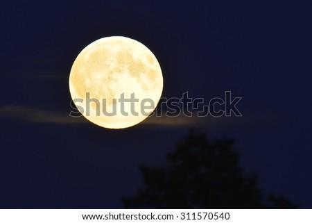 Full moon in the night. - stock photo