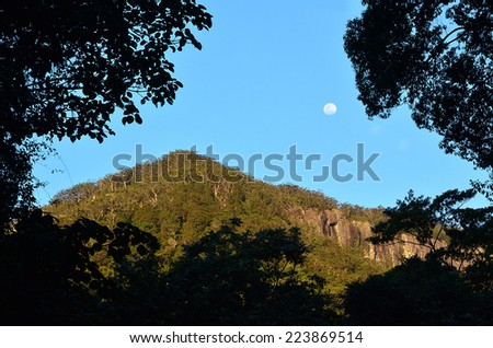 Full moon rise over Springbrook National Park in Queensland Australia. - stock photo