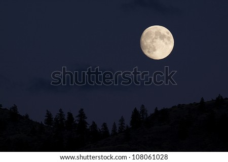 Full Moon Rising over Coniferous Forest; Skyline Silhouette