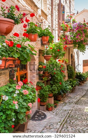 Full of flower porch in small town in Italy, Umbria - stock photo