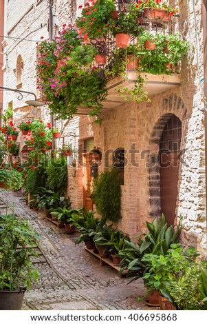 Full of flower streer in small town, Italy, Umbria - stock photo
