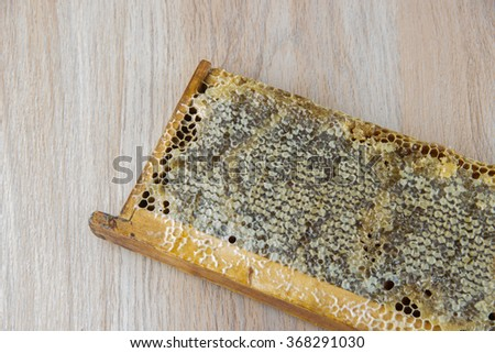 Full of fresh delicious healthy honey honeycomb - stock photo