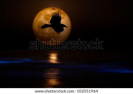 Full 2012 Supermoon With Black Flying Raven silhouette Setting Over Pacific Coast Sea Glowing with Sinister Bio-luminescent Waves ~ Spooky Ocean Beach - stock photo