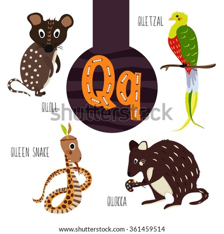 animal with letter q s vocabulary set squash squirrel stock vector 4782