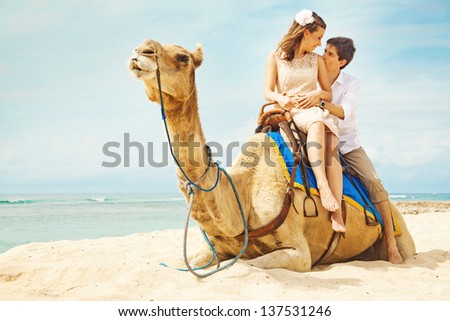 fun camel ride