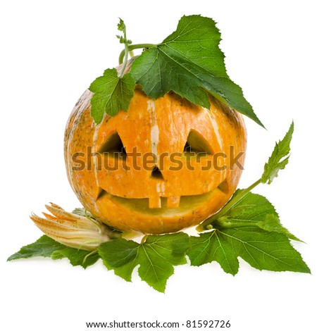 Fun Halloween Pumpkin isolated on white background - stock photo