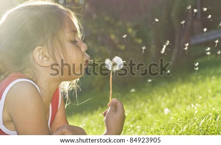 Fun on meadow - stock photo
